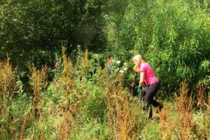 cutting back vegetation