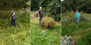 Clearing the meadow of brash.