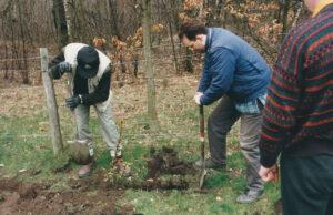 1996: Philip's Park, tree planting.