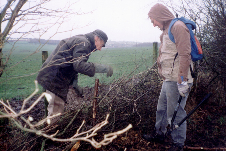 2000: Rumworth, hedging with Dr John.