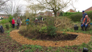 2013: Ladybridge School garden.