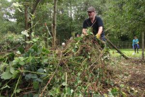 Getting rid of the vegetation.